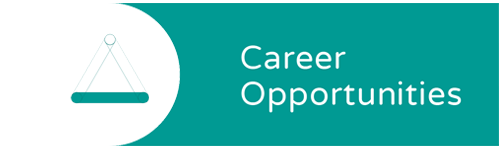 Career opportunities - The Transition Phase - Career Opportunties